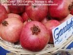 KKL-Kongress 8. Februar 2015 - Rimon-Fruits